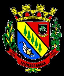 MUNICÍPIO DE TELÊMACO BORBA